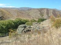Otago vista