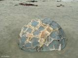 calcite lattice