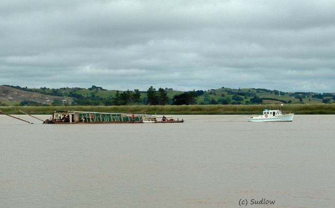 sandbarge on the Wairoa