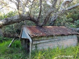 hidden shed5