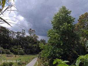 gathering storm2