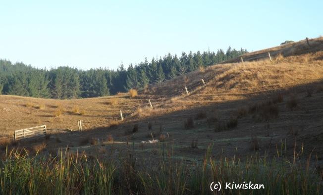 dry hillsides