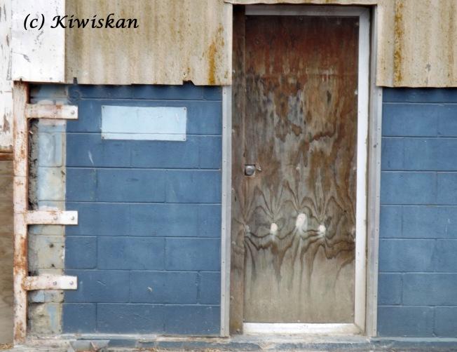 blue shed door