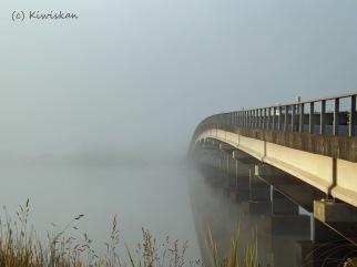 bridge to nowhere2