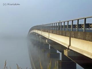 bridge to nowhere3