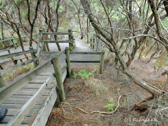 downward path