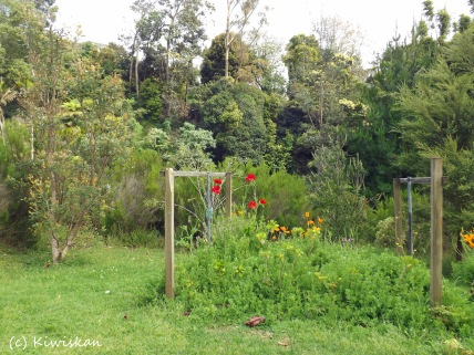 wild garden2