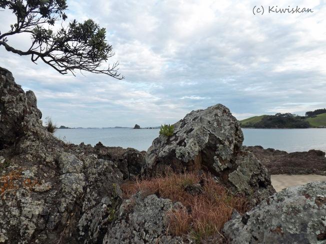 rocky shore2
