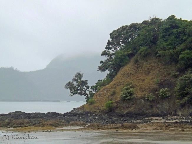 rocky shore3
