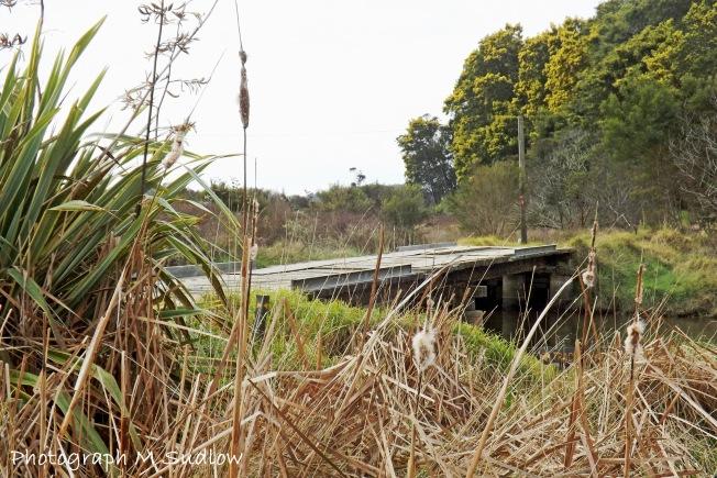 wetlands3