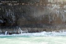 wild shore3