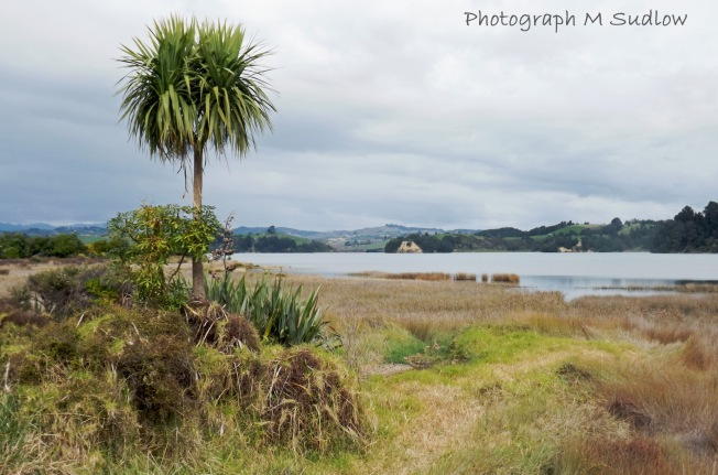 East Coast wetlands