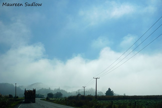 road to Whangarei