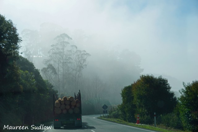 road to Whangarei2