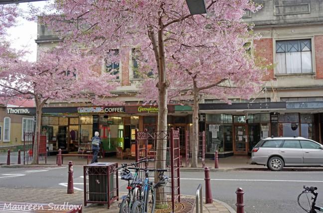 city-spring