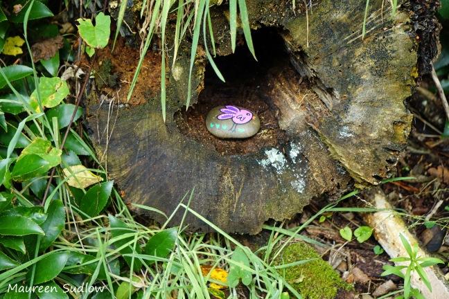 whanganui-rocks