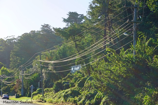 even the power lines 2