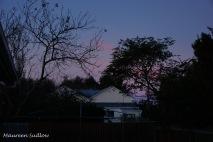 nightfall2