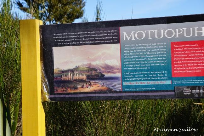 Motuopuhi Island4