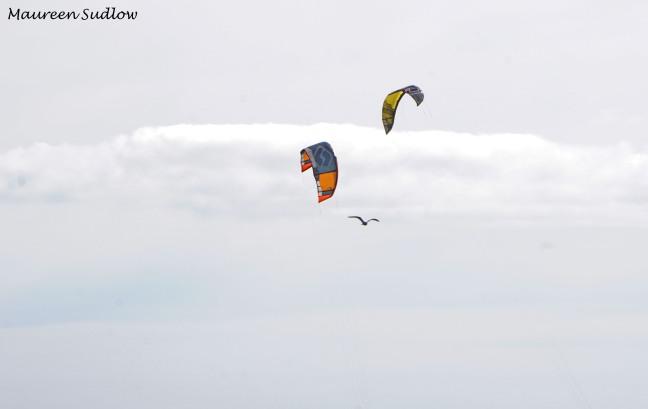 wind surfing 2