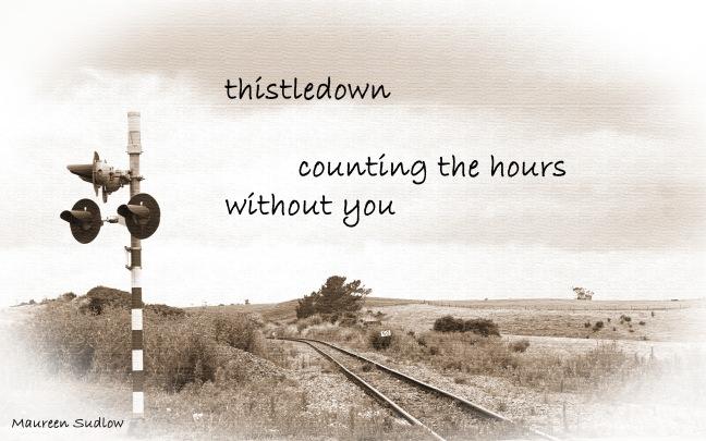 thistledown3