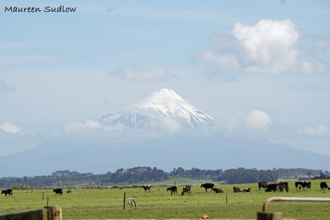 Mt Taranaki first