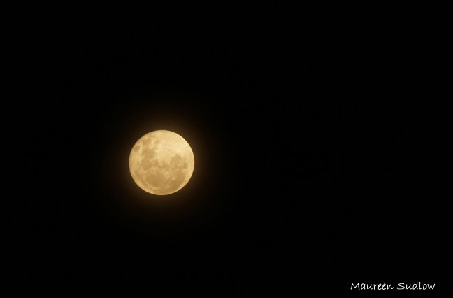 tonights moon