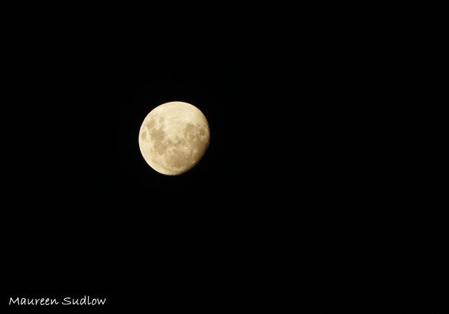 lunar two