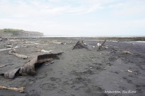 Patea wreck 3