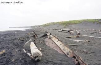 Patea wreck 4