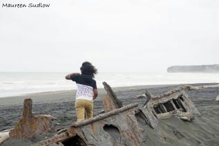 Patea wreck 5