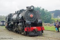 steam train 1236 3