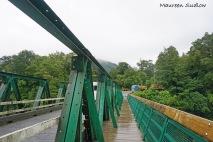 Pelorus Bridge 3