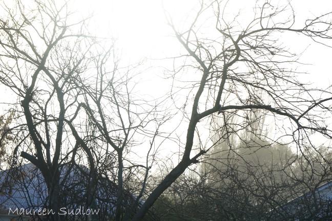 winter sun two
