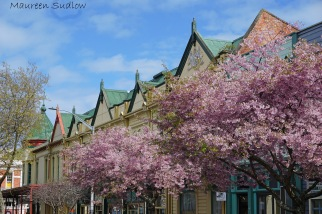 spring in Whanganui two